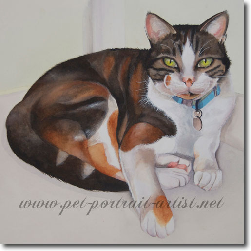 Watercolour Pet Portrait of a Cat, Jenny,  by Joanna Culley