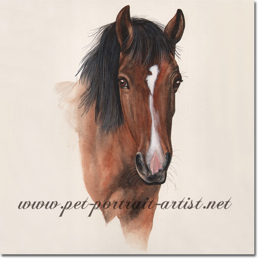 Horse Portrait of Gemini, by Joanna Culley