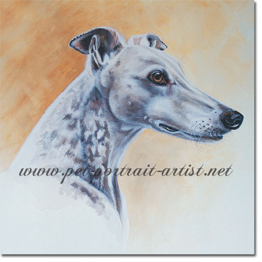 Portrait of a Greyhound, Cindy, by Joanna Culley