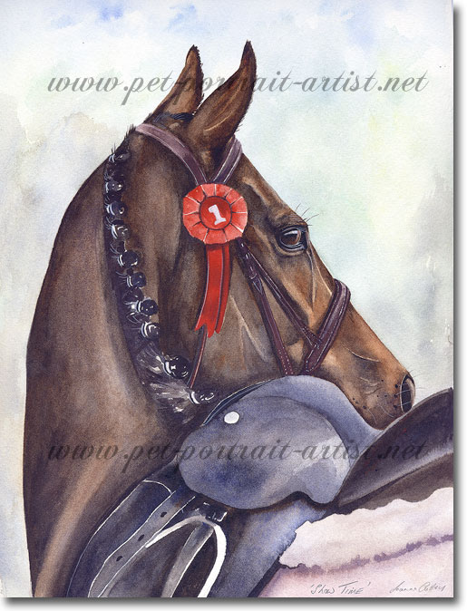 Equine portrait in Watercolour - Showtime, by Joanna Culley