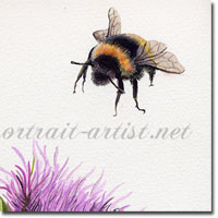 Some Bee Time Watercolour Painting, by Joanna Culley, Acclaimed Animal Artist