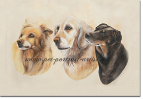 Portrait of Three Dogs by Joanna Culley, Pet Portrait Artist