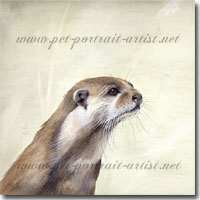 Original watercolour painting of an otter by Joanna Culley