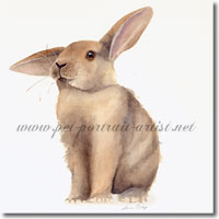 Bad Ear Day - Print from an original watercolour by Joanna Culley