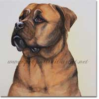 Bull Mastif Dog Painting, by Joanna Culley, Pet Portrait Artist