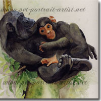 Watercolour picture of a chimpanzee mother with her baby, by Joanna Culley