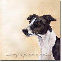 Dog Portrait of Cindy a Greyhound