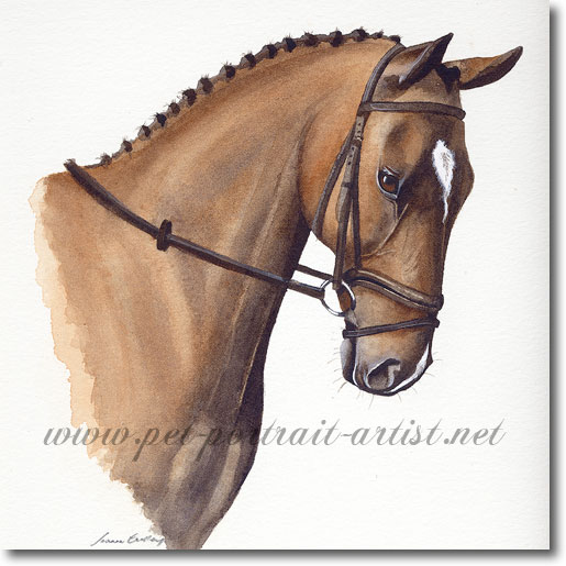 Painting of a Horse, by Joanna Culley