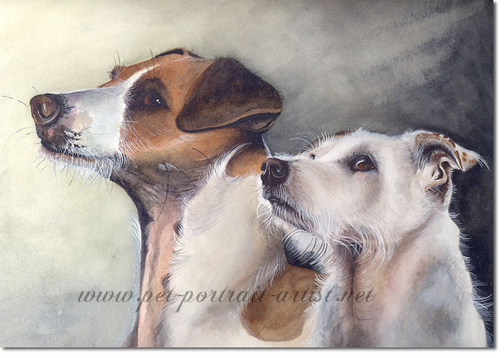 Portrait of Two Jack Russell Terriers, by Joanna Culley