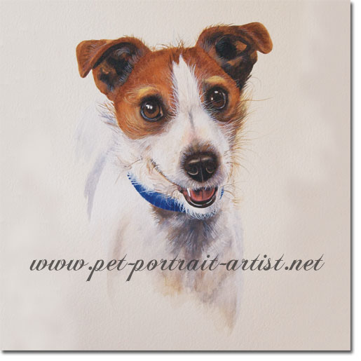 Jack Russell Dog Portrait of Jodi, by Joanna Culley