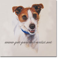 Jodi Jack Russell Terrier Watercolour Portrait