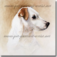 A pet portrait of Teddy the Jack Russell Terrrier by Joanna Culley
