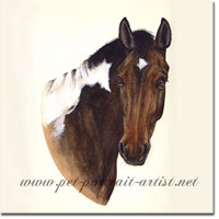Portrait of Pinto, a Horse by Joanna Culley