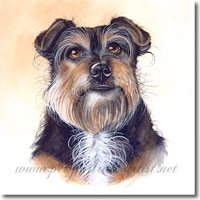 Jemma - Terrier Pet Portrait, by Joanna Culley, Pet Portrait Artist