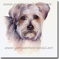 Watercolour Portrait of a Yorkshire Terrier, by Joanna Culley, Pet Portrait Artist